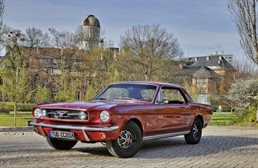 Mustang_2018-06-02.jpg