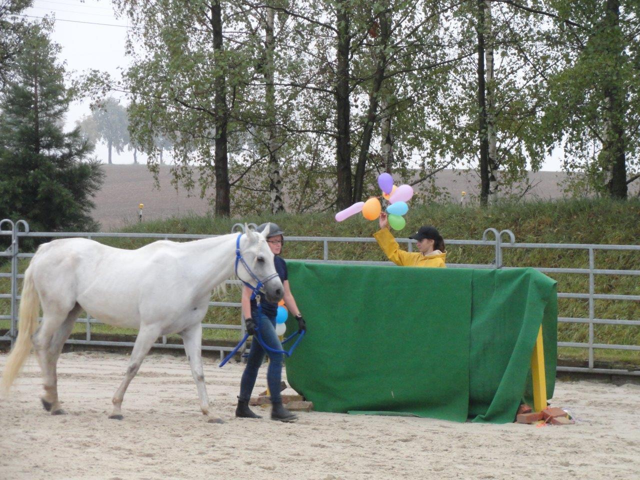 2019_White-Horse-Ranch_Gelassenheitsprüfung.jpg