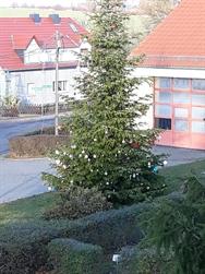2019-11-23_Weihnachtsbaum Braunsdorf.jpg