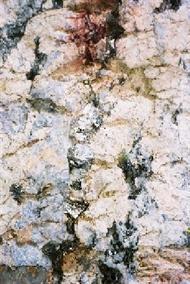 Geologisches-Freilichtmuseum_Einschluss.jpg